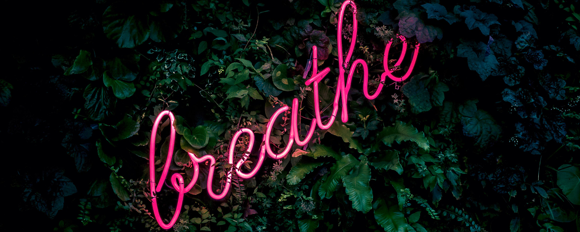 Breathing and Mindful Techniques
